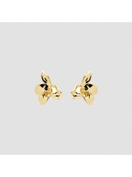 PDPAOLA NARCISE EARRINGS IN YELLOW GOLD PLATED SILVER